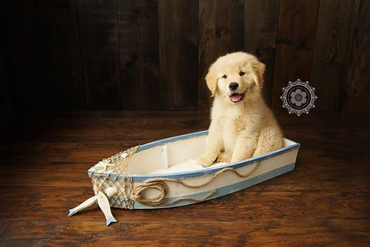 Tipsy in a boat